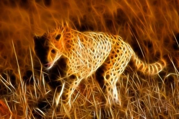 en cheetah